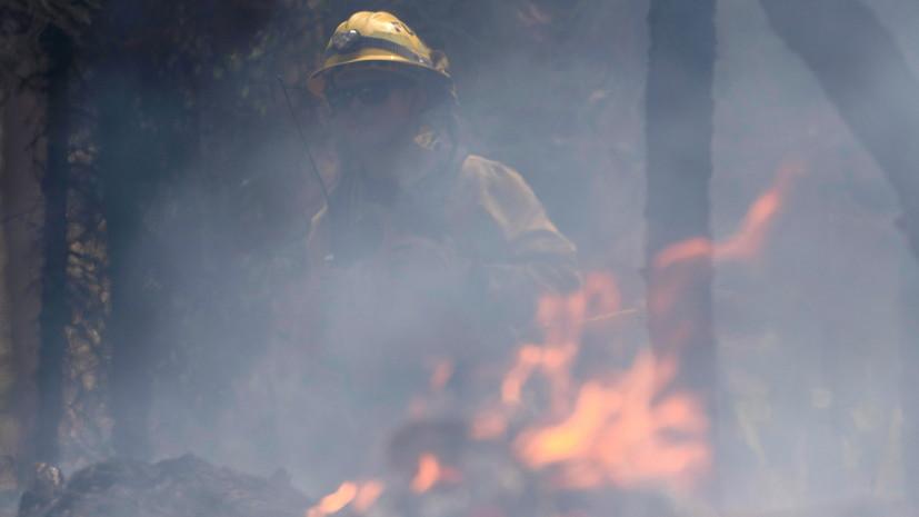 В США пытаются ликвидировать более 80 лесных пожаров