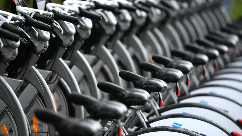 Велотранспортный союз поддержал идею строительства велотрассы Москва — Владивосток