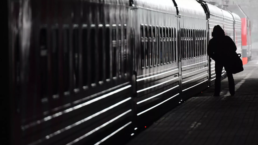 В Петербурге преобразуют в единую систему электрички и городской транспорт