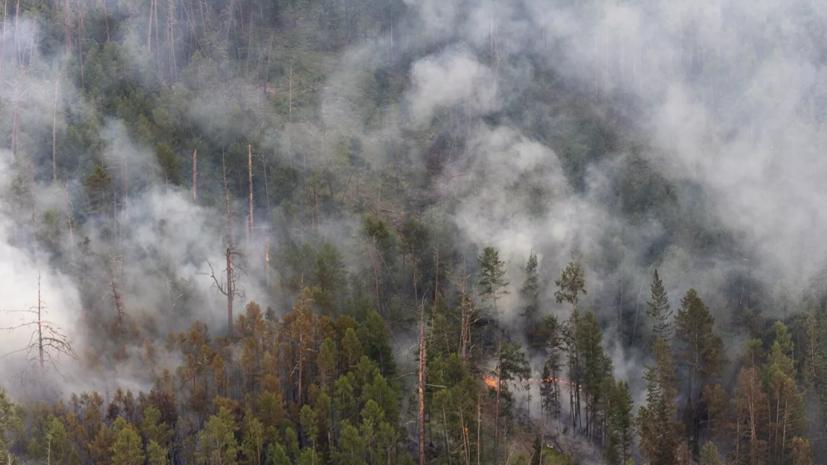 Мишустин призвал активнее использовать авиацию в борьбе с пожарами в Якутии