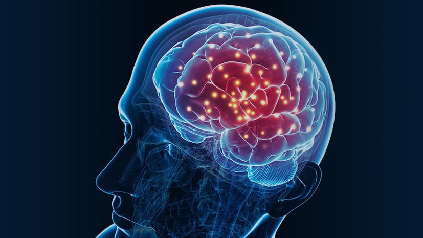 Врач рассказал, как поддержать работу нервной системы и мозга с возрастом