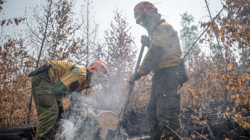 В России за сутки потушили 81 лесной пожар