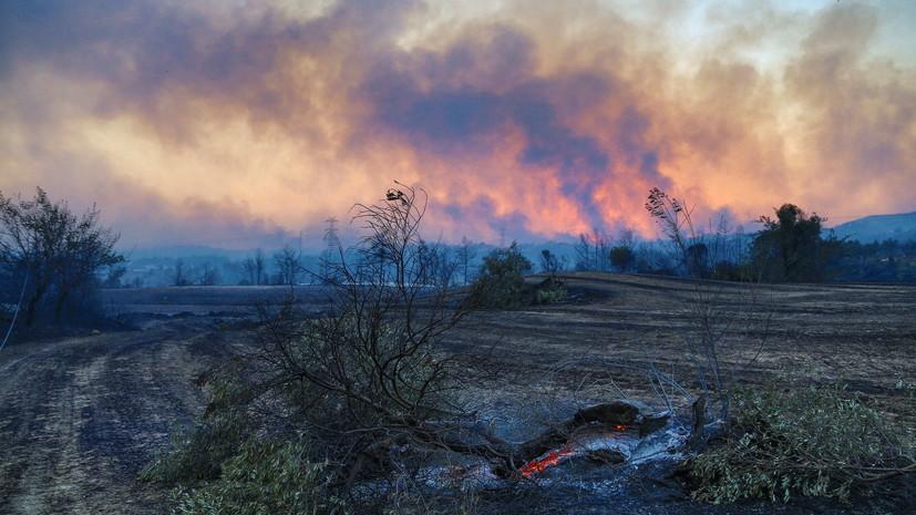 По меньшей мере один человек погиб при лесном пожаре в Анталье