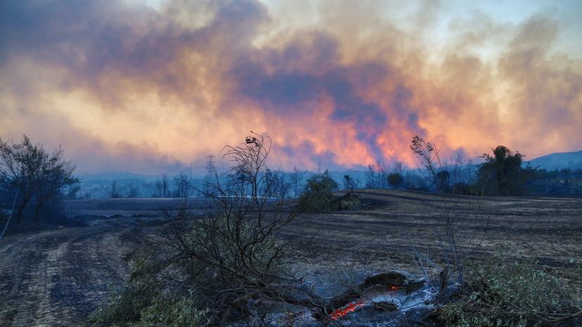 Число погибших из-за лесного пожара в Турции возросло до трёх