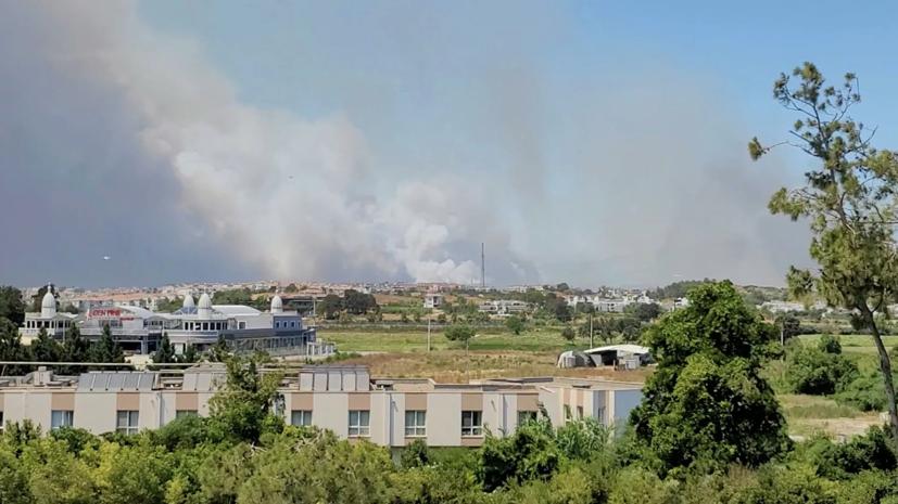 CNN Turk: в Турции произошли новые лесные пожары