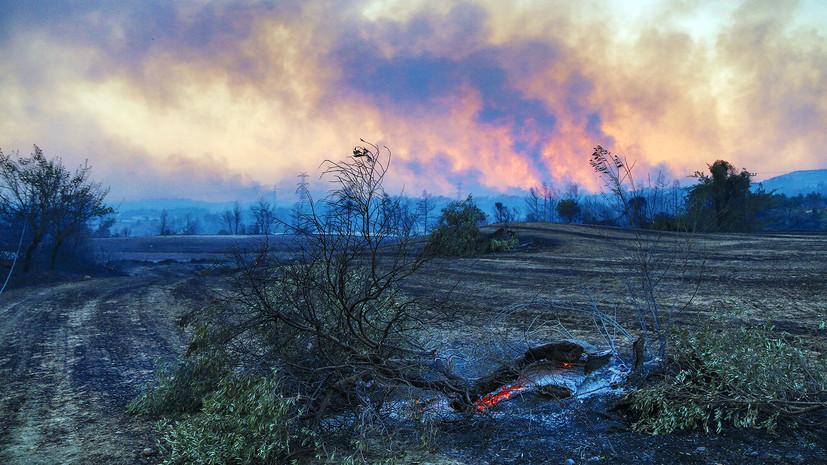 Эвакуировано несколько отелей: как развивается ситуация с лесными пожарами в Турции