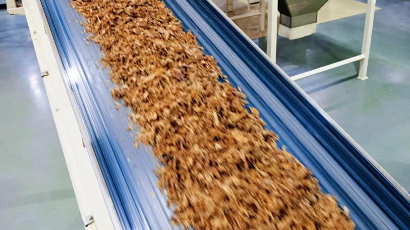 Россельхознадзор отменил запрет на импорт табачного сырья из ЮАР