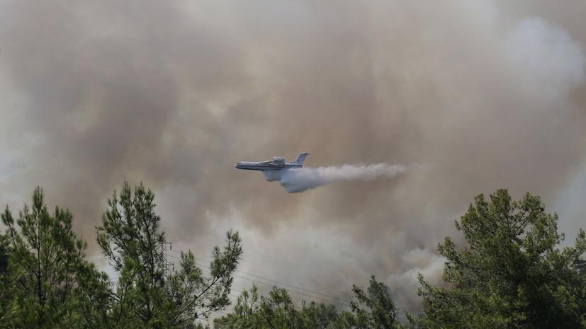 В Турции локализовали 70 очагов лесных пожаров из 81