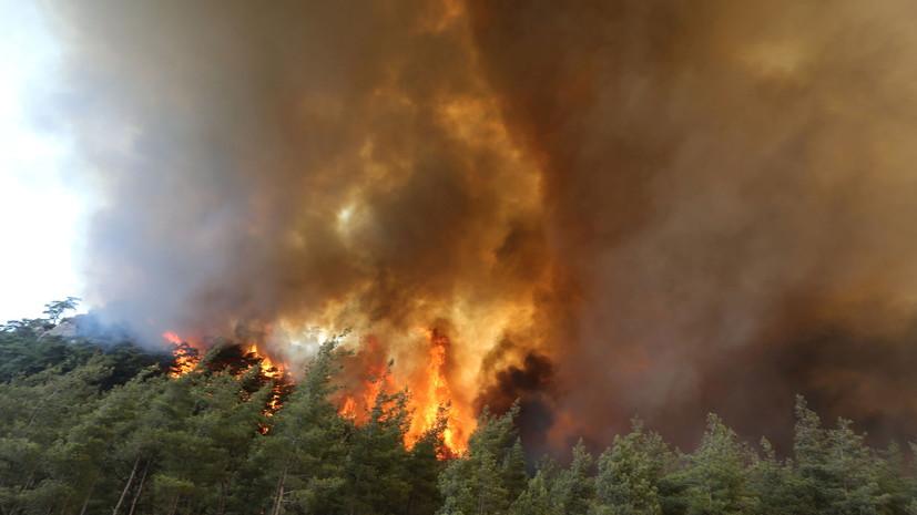 Россия направит в Турцию авиагруппировку для тушения лесных пожаров