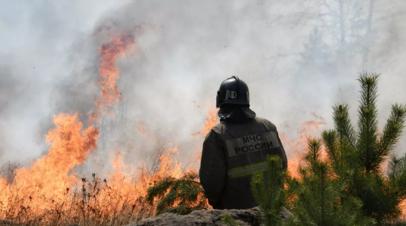 В Челябинской области сообщили об угрозе населённым пунктам из-за пожаров