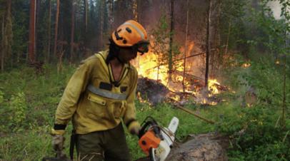 В России за сутки потушили 116 лесных пожаров