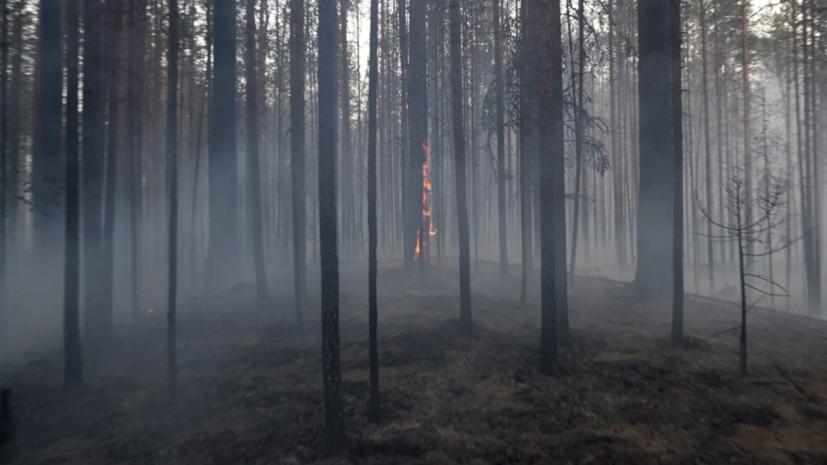 В Крыму объявили чрезвычайную пожарную опасность
