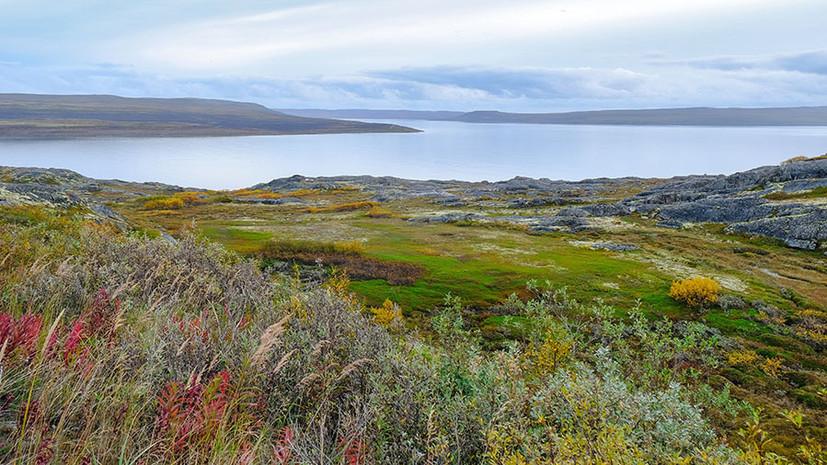 «Получить в безвозмездное пользование»: стартовала программа предоставления россиянам земли в Арктике