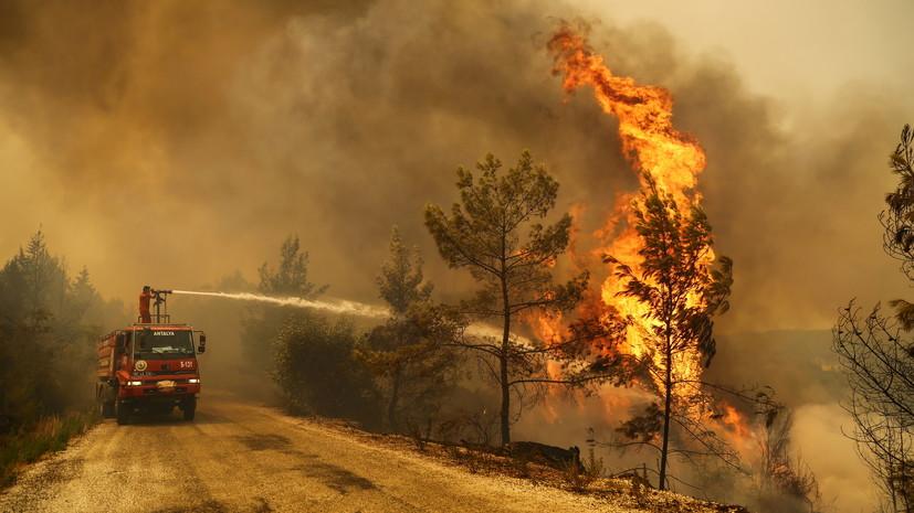 Yeni Safak: «Дети огня» ответственны за поджоги лесов в Турции