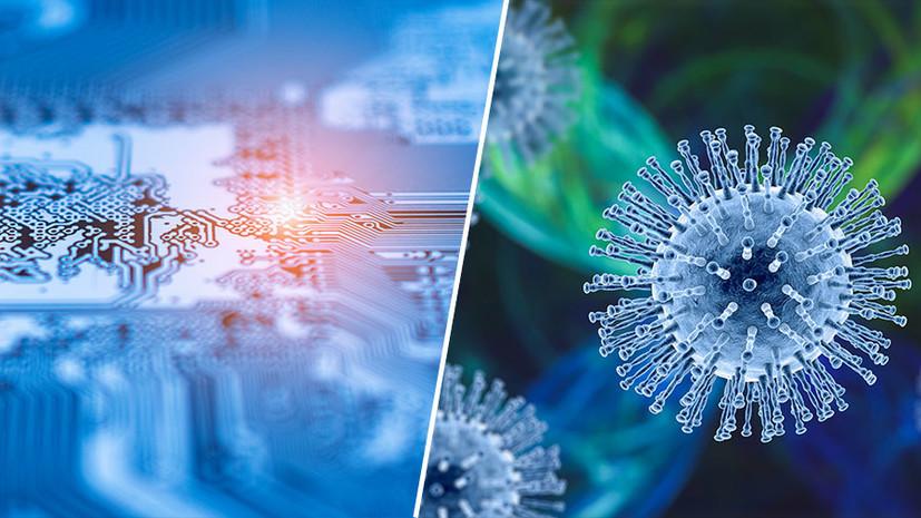 «Это универсальный тест»: российские учёные работают над ДНК-биочипом для выявления коронавируса