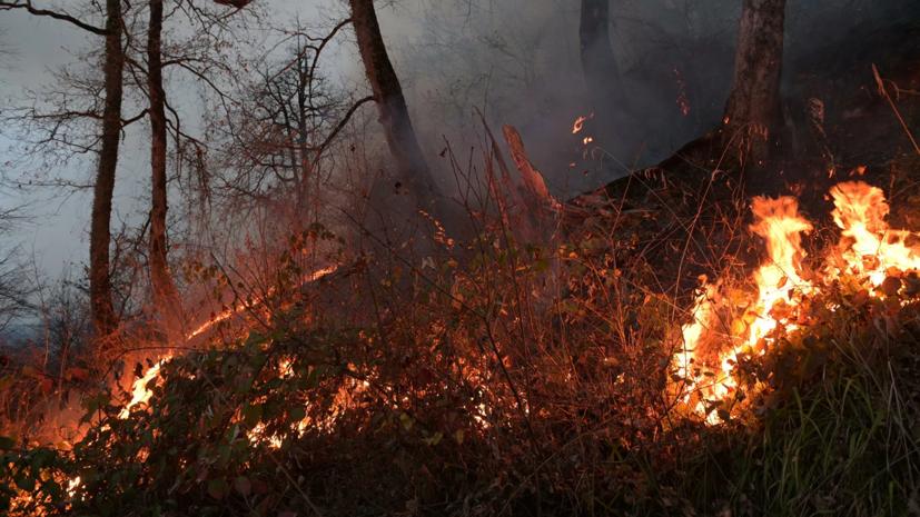 Природному пожару в Оренбургской областиприсвоили третий ранг сложности
