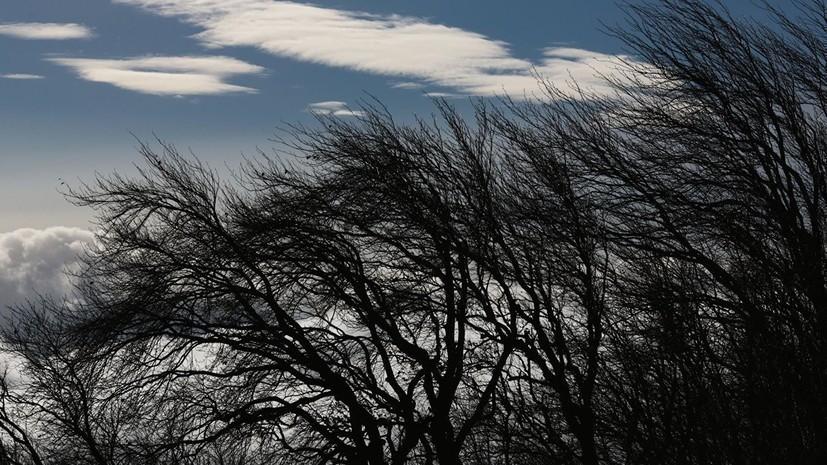 Спасатели предупредили о граде и усилении ветра в Крыму в ближайшее время