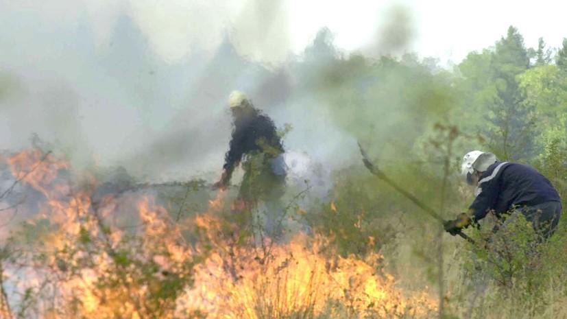 В Болгарии из-за лесных пожаров погибли два человека