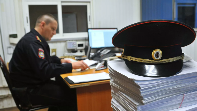 МВД: в России незаконно находятся более 700 тысяч выходцев из СНГ