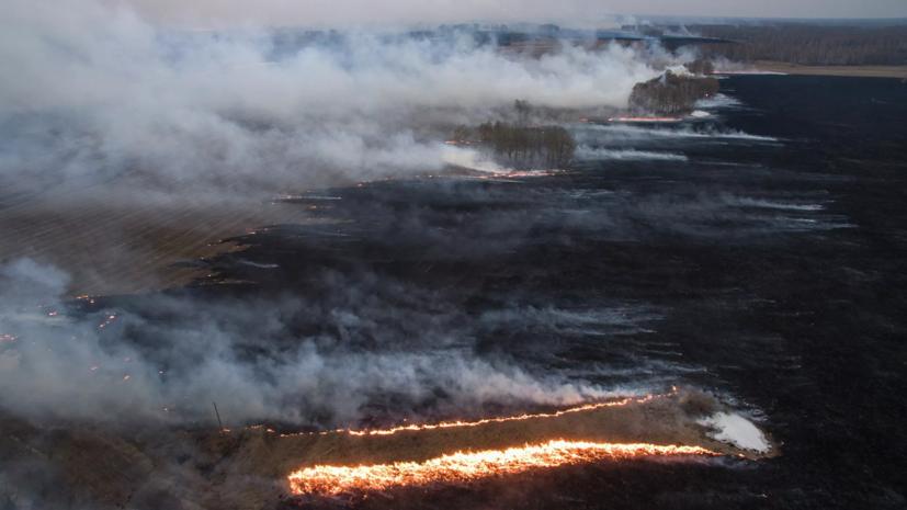 В Красноярске ввели режим «чёрного неба» из-за лесных пожаров