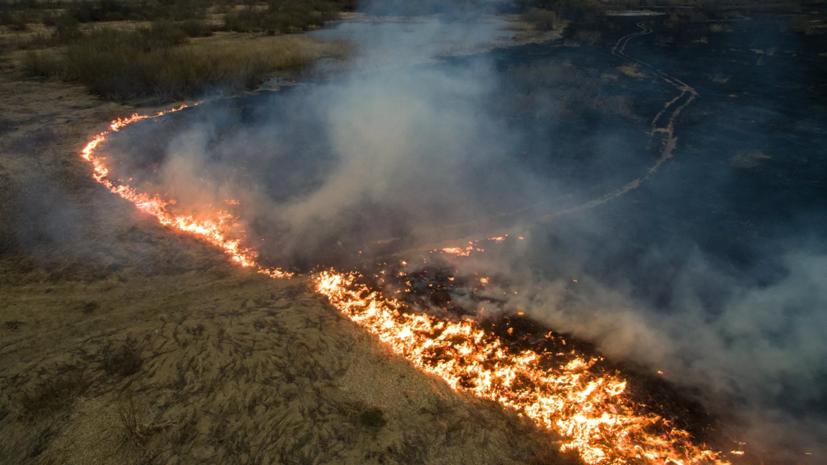 К тушению пожара в мордовском заповеднике привлекли два пожарных поезда