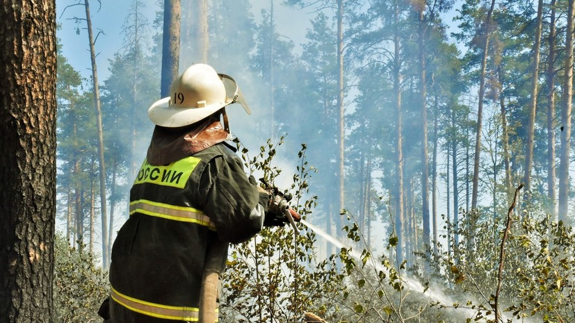 В Минобороны рассказали о ходе тушения пожара в заповеднике в Мордовии