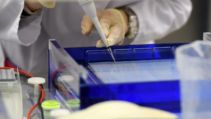 В Томской области выявили 118 случаев коронавируса за сутки