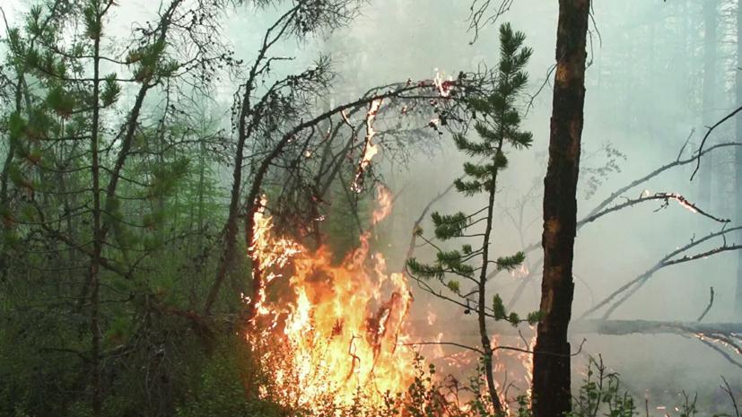 Техника Минобороны для тушения пожаров прибыла в Намский район Якутии