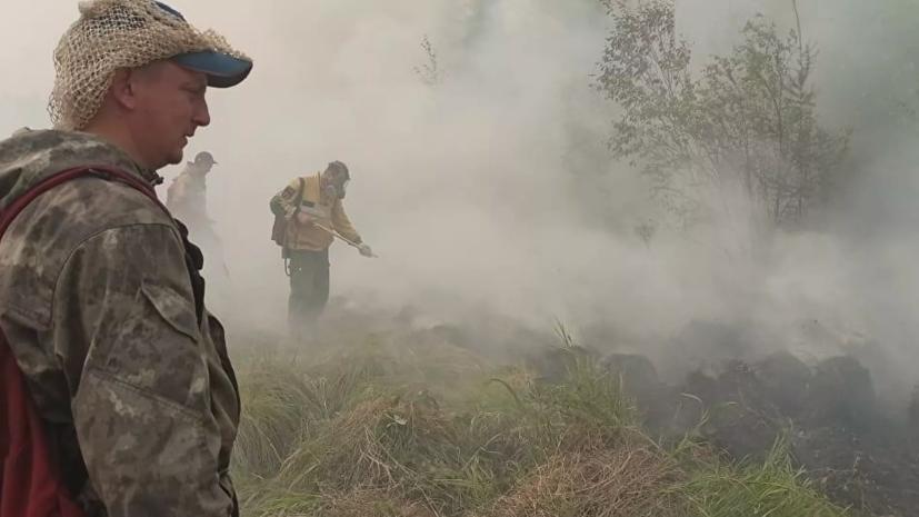 В МЧС заявили об уменьшении площади пожара в мордовском заповеднике