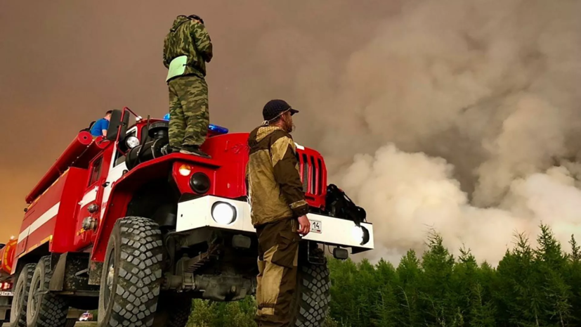 В Якутии рассказали о спасении пострадавших от пожаров животных