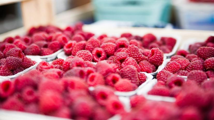 Диетолог Бурлакова рассказала о повышающих иммунитет продуктах