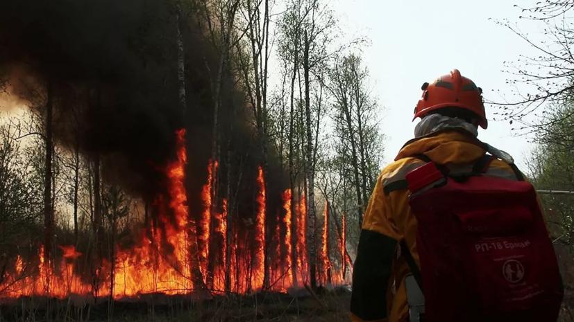 В Якутию прибыла первая группа из 100 спасателей для тушения лесных пожаров