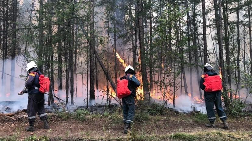 За неделю лесопожарные службы ликвидировали 382 лесных пожара в России