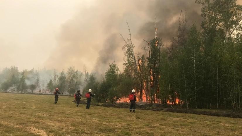 В России за сутки ликвидировали 78 природных пожаров