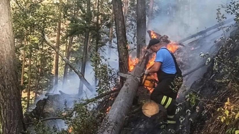 В МЧС рассказали о ситуации с лесными пожарами в Башкирии