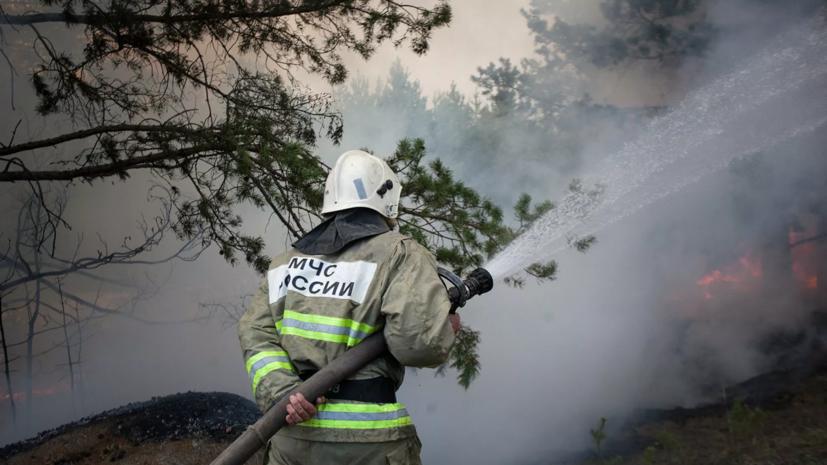 В МЧС назвали площадь природного пожара в Самарской области