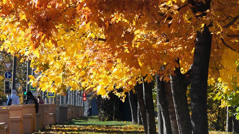 Метеоролог Шувалов рассказал, когда наступит осень в столичном регионе