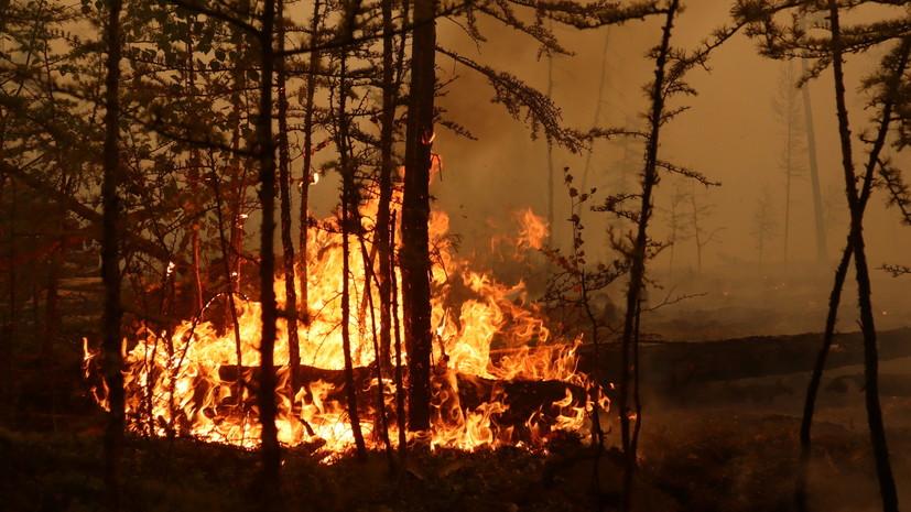 В Свердловской области зафиксирован новый очаг лесного пожара