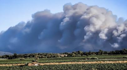 На юго-востоке Франции горит крупный лесной пожар