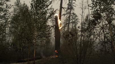 Трутнев рассказал о ситуации с лесными пожарами в Якутии