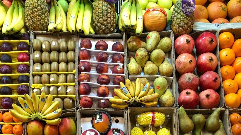 Диетолог Гинзбург перечислил укрепляющие иммунитет продукты