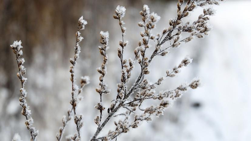 В Тюменской области ожидается резкое потепление до +23 ˚С