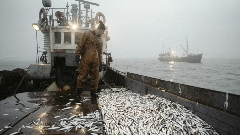В Литве обеспокоены рыбным промыслом России в Балтийском море