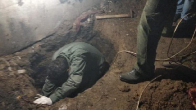 «Обнаружили тело закопанным в подвале»: что известно об убийстве школьницы в Орловской области