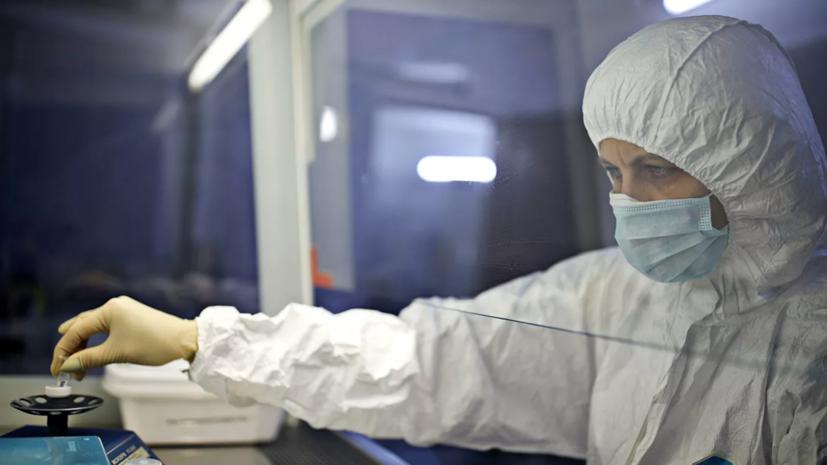 В России за сутки выявлено 19 905 случаев коронавируса
