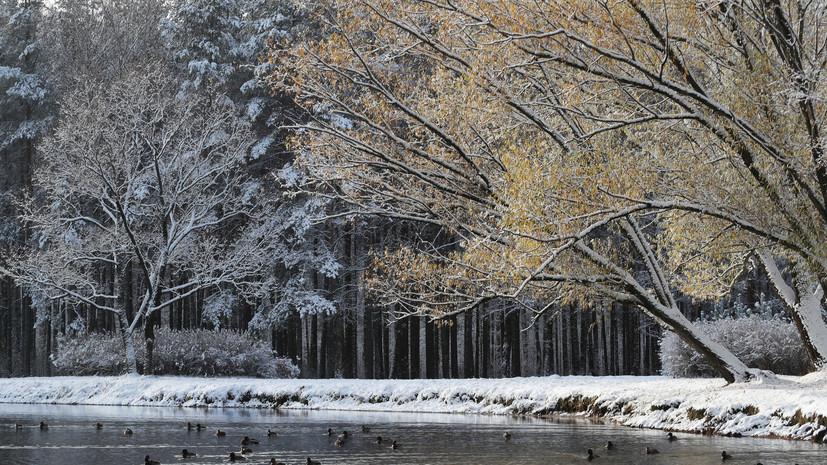 Климатолог Терешонок рассказал, какая погода ожидается в России зимой