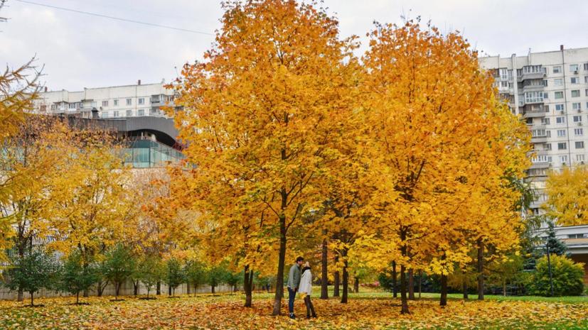 Кардиолог Маршинцева перечислила способы улучшения самочувствия осенью