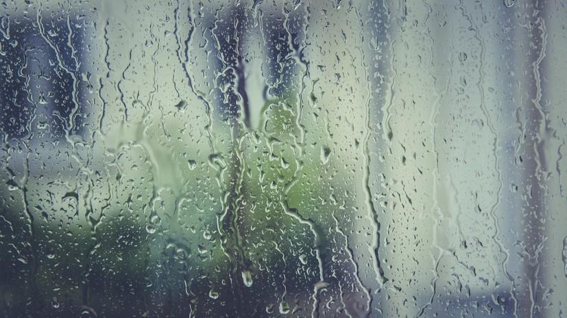 МЧС предупредило о дожде и порывистом ветре в Москве в ближайшие часы