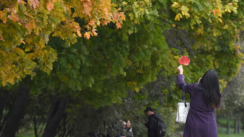 Синоптик рассказала о возможном потеплении в Нижегородской области в начале октября