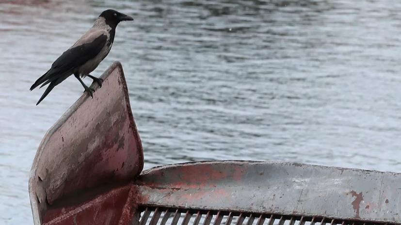 В Кировской области завели дело по факту загрязнения реки